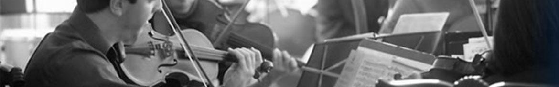 violins playing