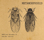 CD album cover metamorphosis